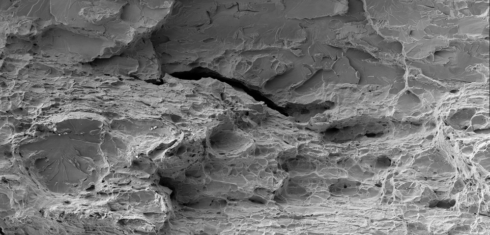 First Place - Sofía Hazarabedian: Composite secondary electron image of the fracture surface (full description in the following slides).